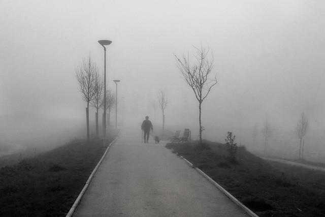 Nella nebbia