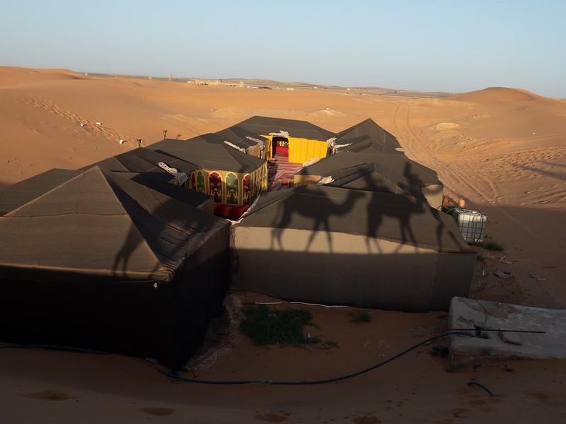 20200118_サハラ砂漠_14