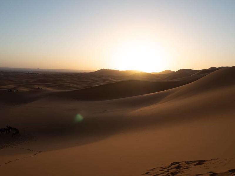 20200118_サハラ砂漠_22