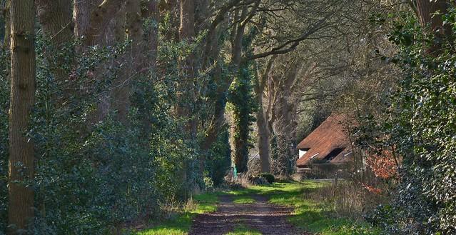 Boskampsbrugweg - Havelte