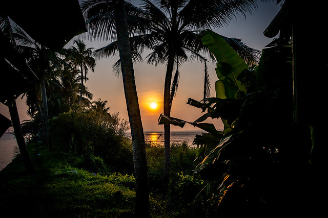 India - Kerala -Alappuzha - Sunrise - 4447