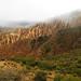 Quebrada de Palala (Bolivia) (2)