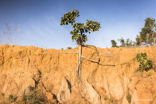 kadunastate nigeria westafrica zaria erosion farming landscape village giwa