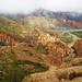 Quebrada de Palala (Bolivia) (4)