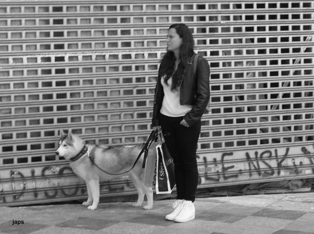Paseante con perro, Montera