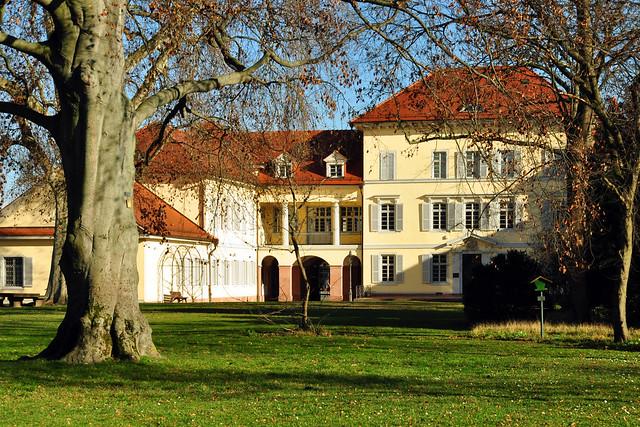 Schlossgarten Neckarhausen, Januar 2020 ... Brigitte Stolle 2020