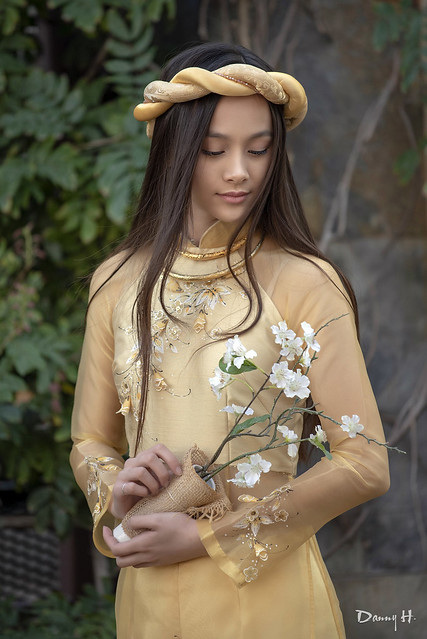 Vietnamese Fashion Model Ao dai Traditional Dress