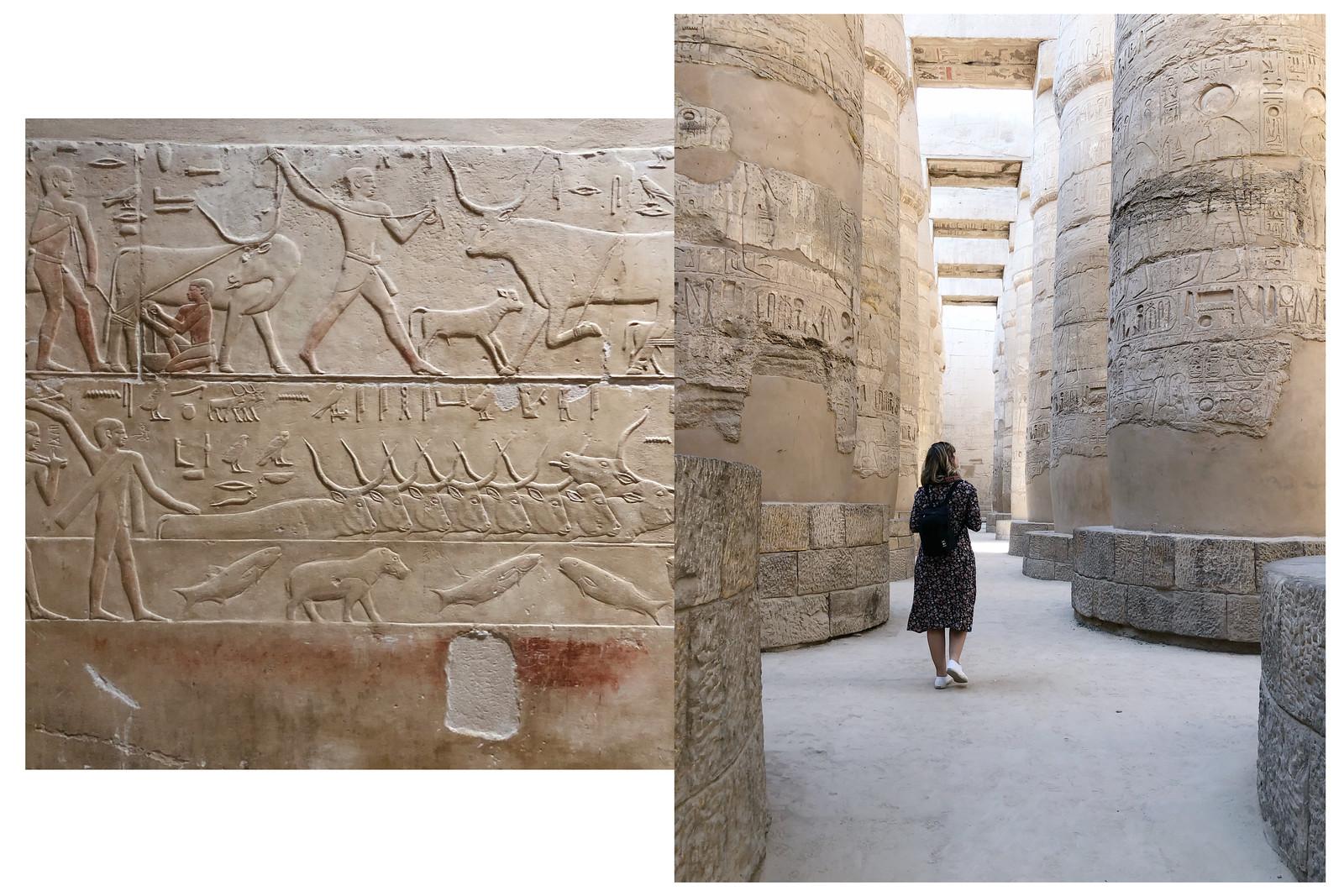 duo egipto