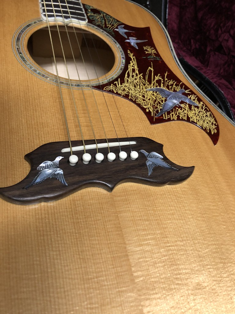 Gibson DIF