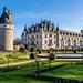 Château de Chenonceau - Jardines