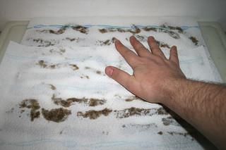 20 - Soja-Streifen trocken tupfen / Pat soy stripes dry