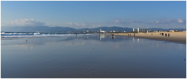 Low tide, looking north along the Pacific Ocean @ Venice Beach Calif