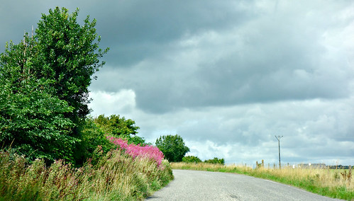 on the road - galmoylestown - westmeath