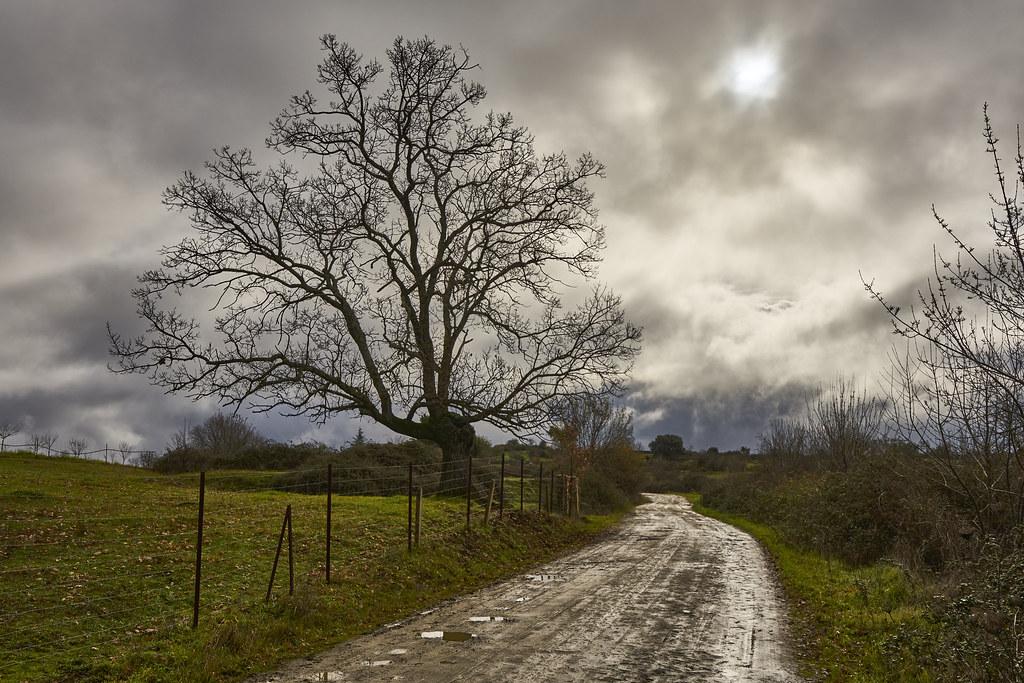 Camino de Gargüera, 6001_170120 49405296477_d605bdce4d_b