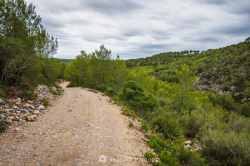Camino de Mas Vendrell
