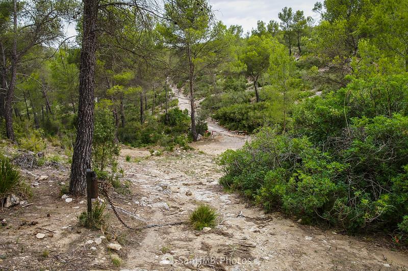 Cruce de caminos cerca de Mas Vendrell