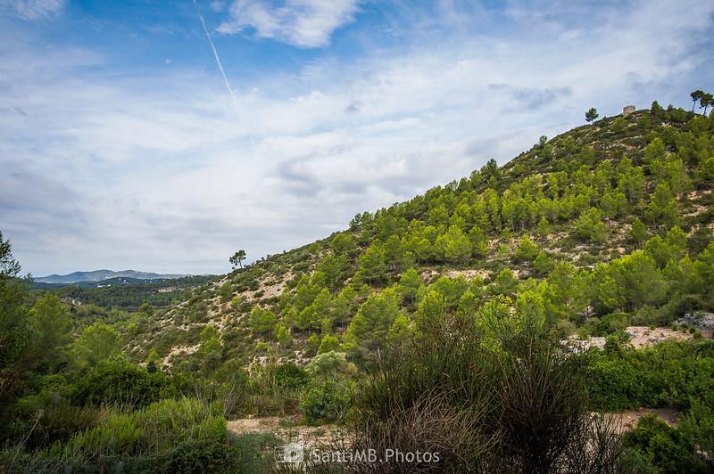 El Castell Vell d'Olivella desde la Font del Rector