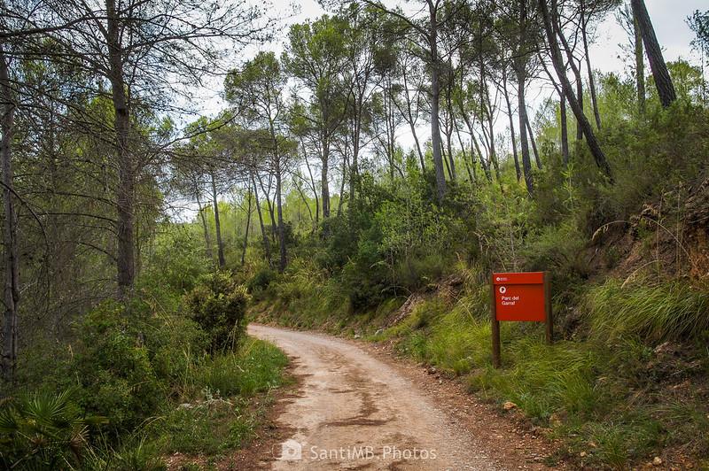 Entrando en el Parc Natural del Garraf por el PR-C 37
