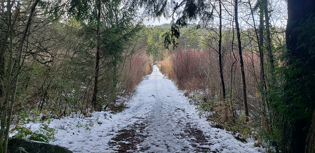 Florence Lake Trail in Winter