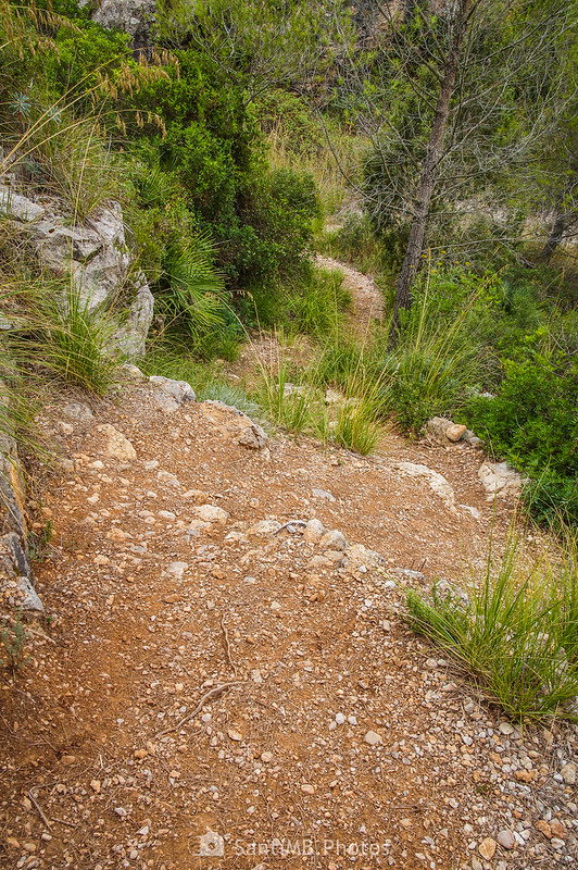 Bajando a la riera de Begues desde el mirador de la Cova de Cal Muntaner