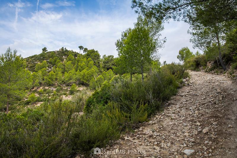 Camino al Castell Vell d'Olivella