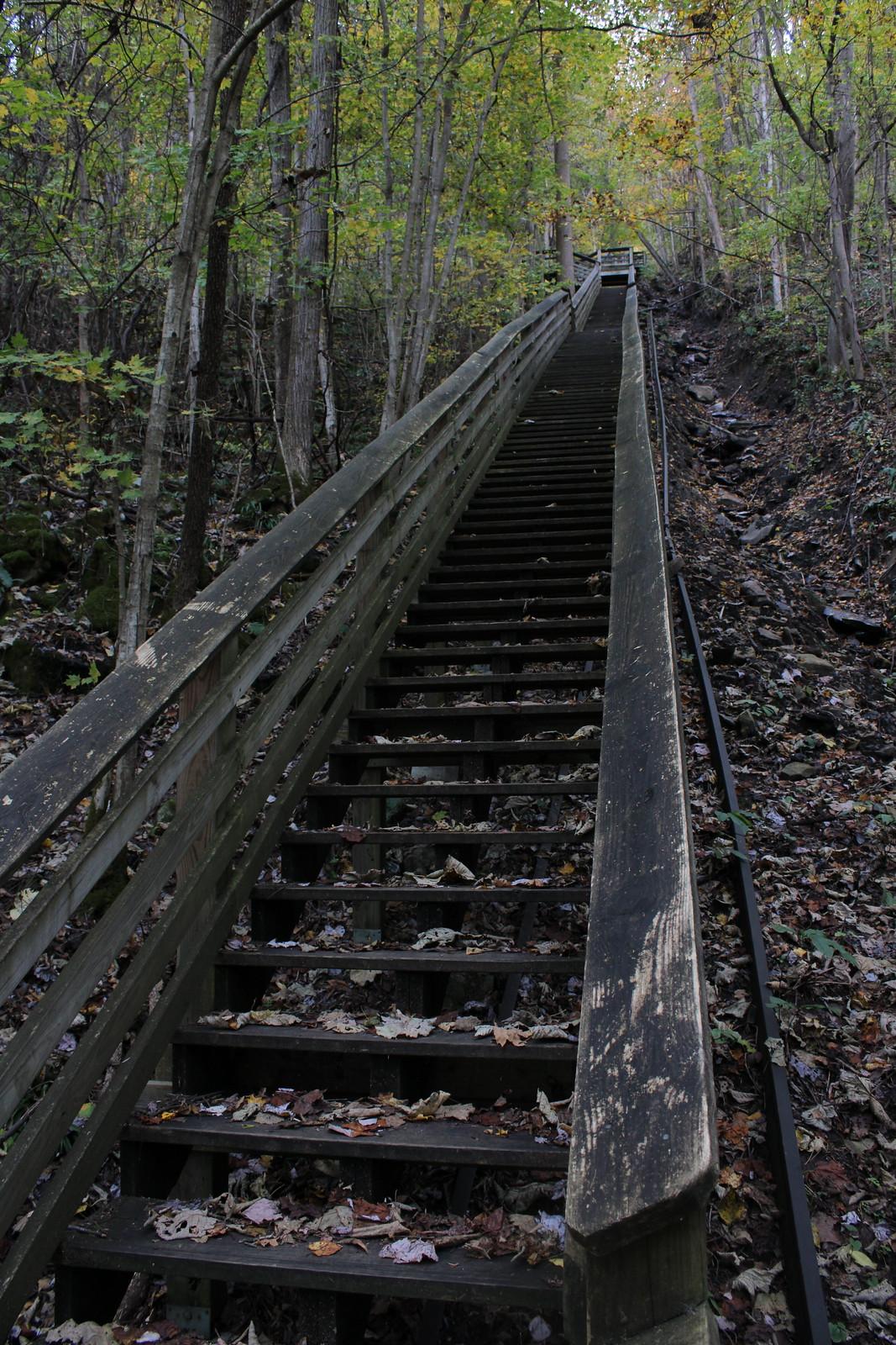 Stair steps.