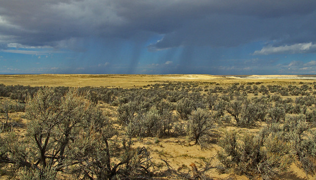 New Mexico, San Juan Co.  USA.