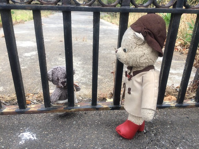 Paddington and Scout Establish Who is on the Wrong Side of the Bars 1.