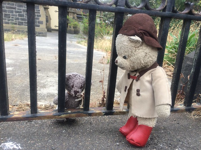 Paddington and Scout Establish Who is on the Wrong Side of the Bars 2.
