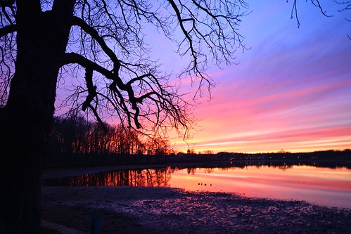 teich pond sonnenuntergang sunset baum tree sachsen saxony deutschland germany allemagne germania