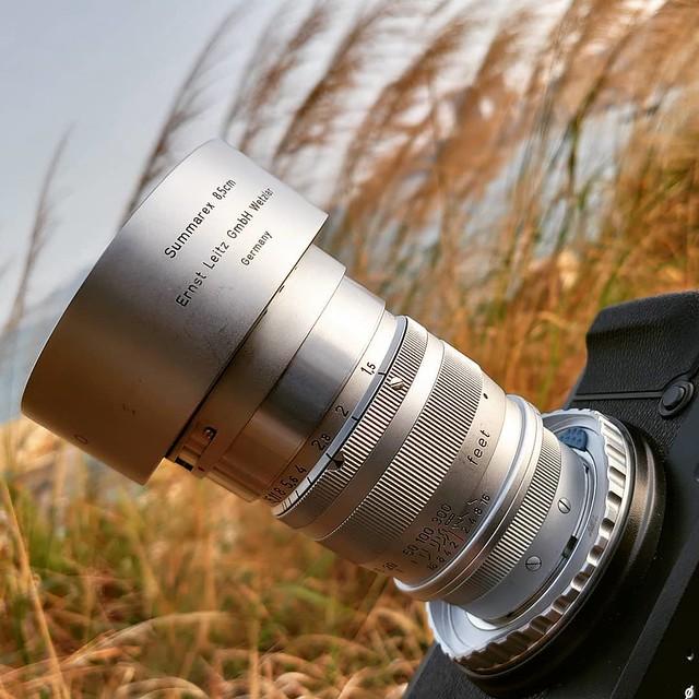 Leica Summarex 8.5cm f1.5 傳說之人像帝皇