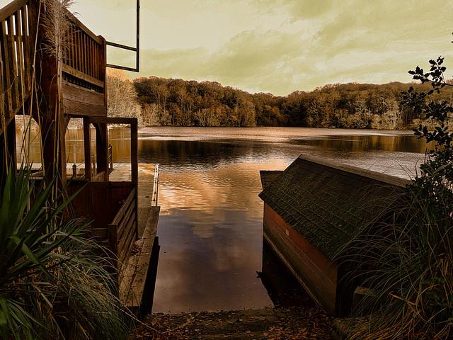 Vue sur l'étang.