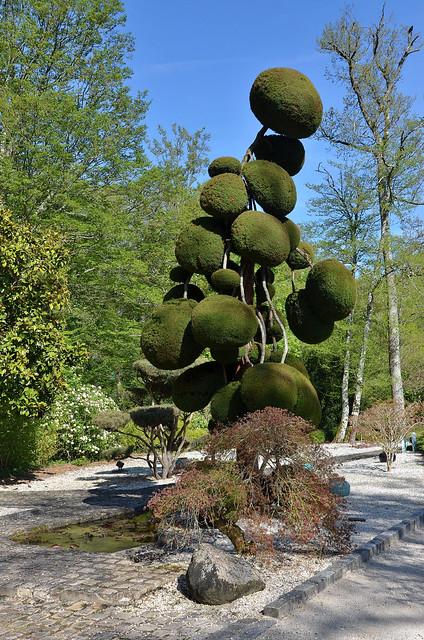 Orléans (Loiret) - Parc floral de la Source - Jardin de formes