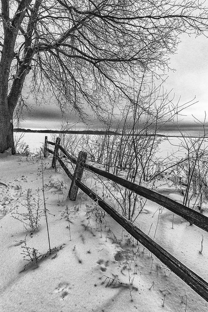 Split Rail to Waters Edge