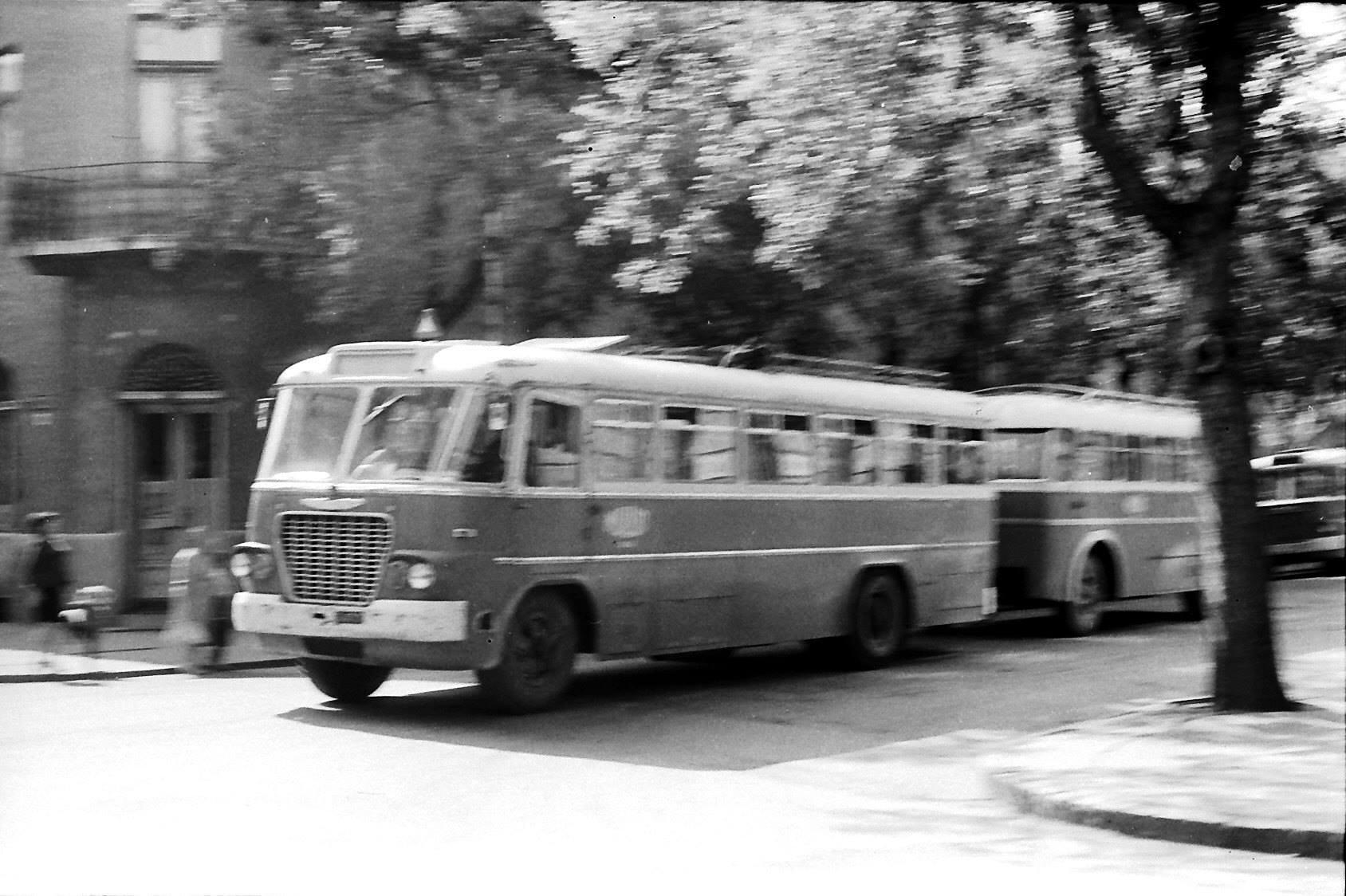 Az első busz az első igaz szegedi lakótelepre