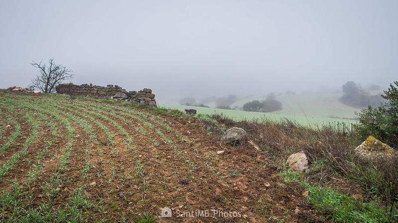 Ruinas junto al camino de Mas de Bondia a Guimerà