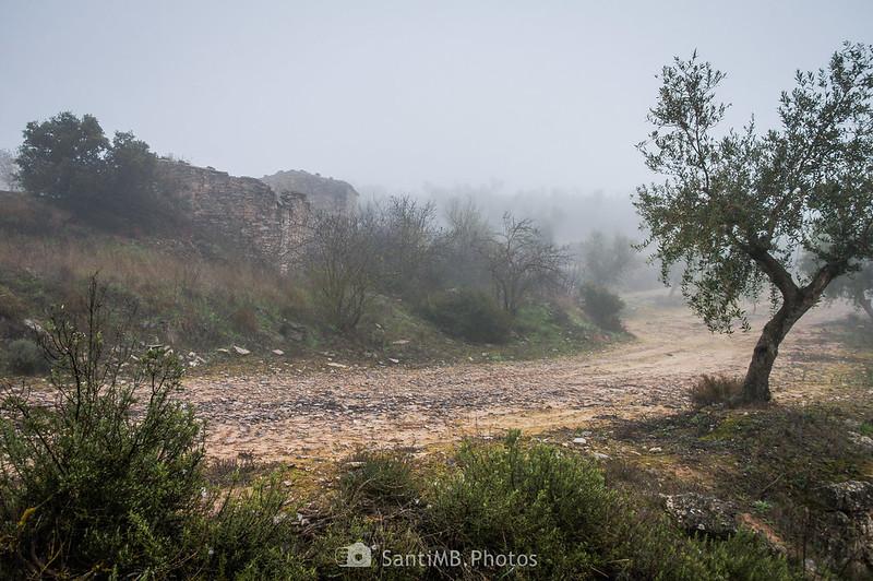 Cabañas de piedra junto al camino de Mas de Bondia a Guimerà