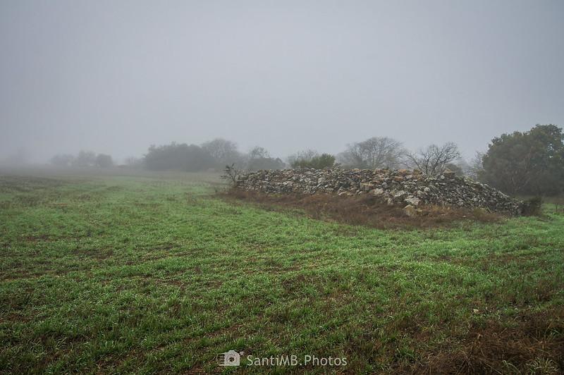 Cabaña derruída junto al camino de Verdú a l'Ametlla de Segarra