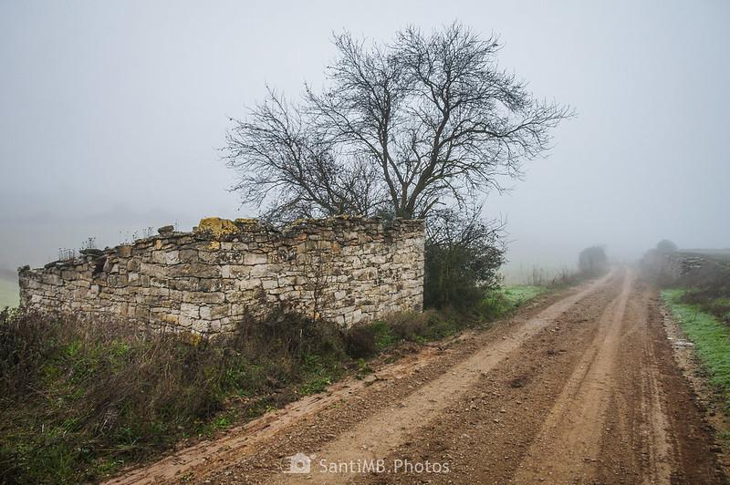 Cabaña de piedra junto al camino de Verdí a l'Ametlla de Segarra