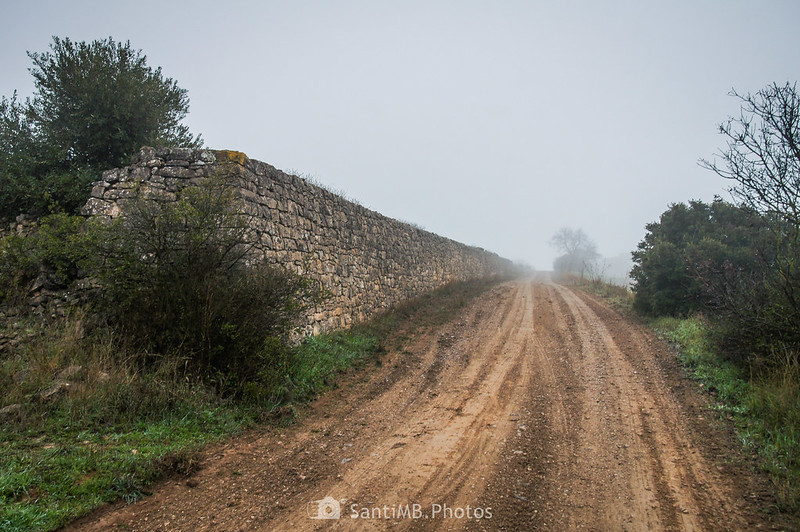 Muro de piedra en el camino de Verdú a l'Ametlla de Segarra
