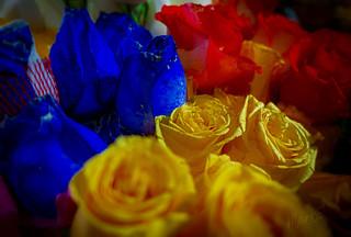 Azul, rojo y amarillo