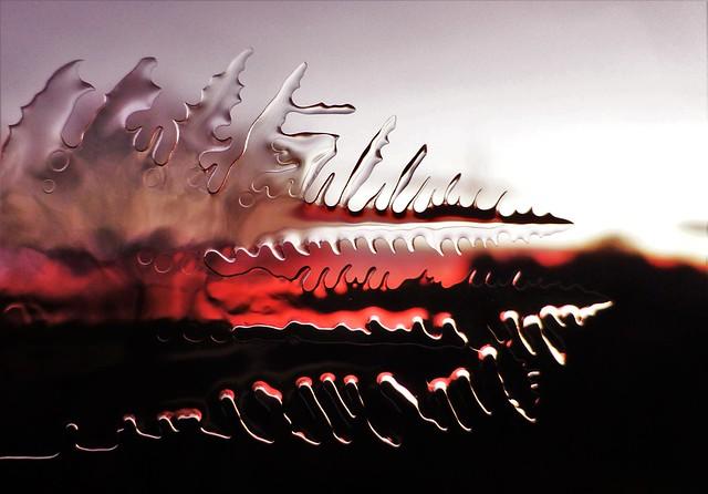 Ice @ Sunrise..x