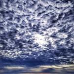 18. Jaanuar 2020 - 10:37 - Baix Llobregat. Playa de Castelldefels. Castelldefels beach.