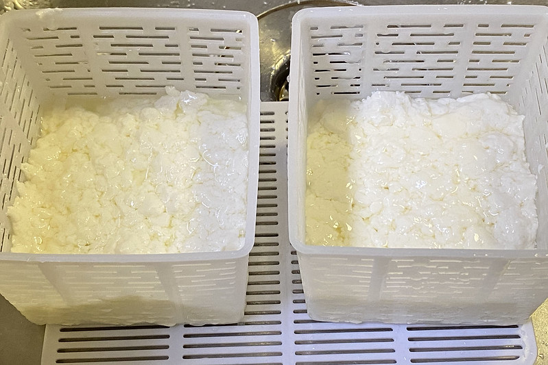 Curds in moulds