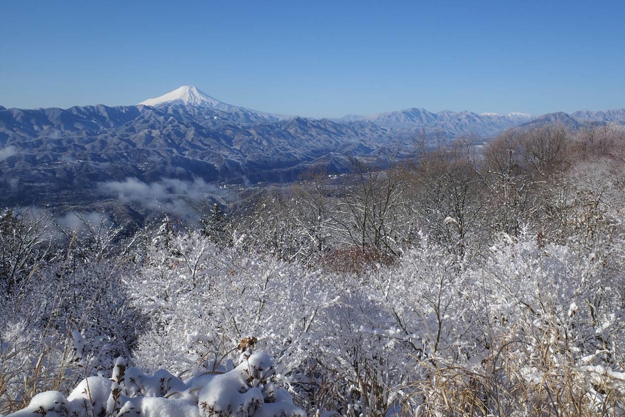 霧氷と富士山