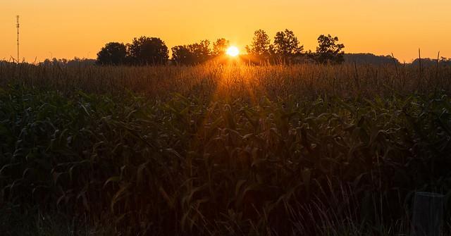 Warm Weather Sunrise