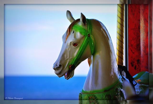 Cheval du carroussel avec la mer en toile de fond