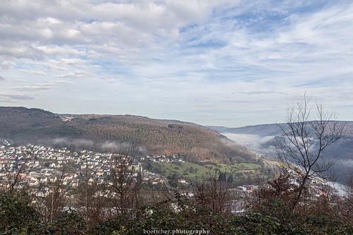 Misty Neckar Valley - January 2019 VII