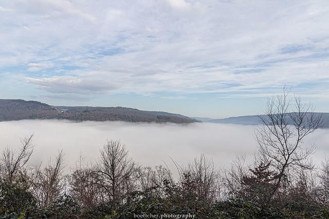 Misty Neckar Valley - January 2019 III