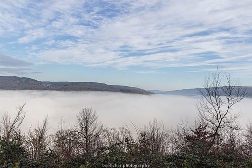 Misty Neckar Valley - January 2019 II